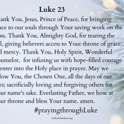 Praying through Luke:       Day 23