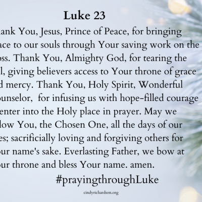 Praying through Luke:       Day 23